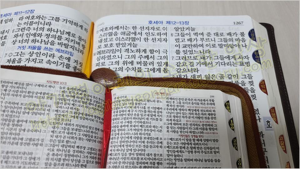 일반성경과비교