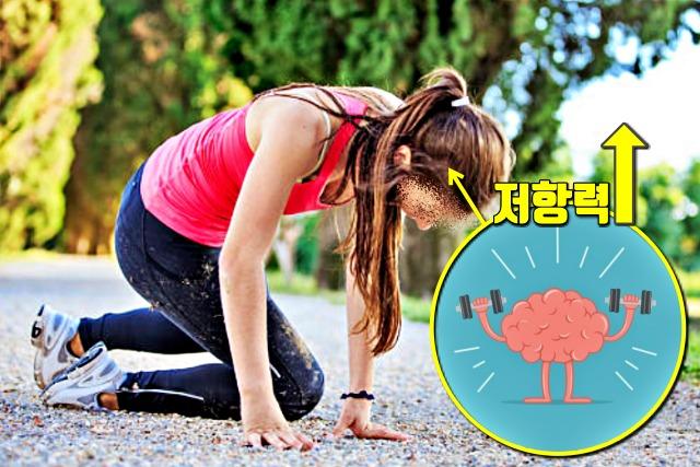 뇌세포 재생, 치매, 생로병사의 비밀, 보폭 10cm 더 넓혀 걷기 운동 효과, 건강, 팁줌마 매일꿀정보