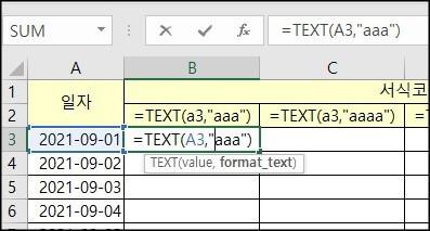 text-함수-서식코드-입력