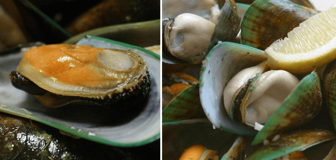 초록입홍합-모습-사진