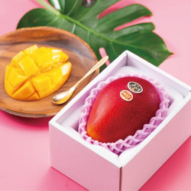 비싼 과일, 타이요 노타마고 망고, 매일꿀정보