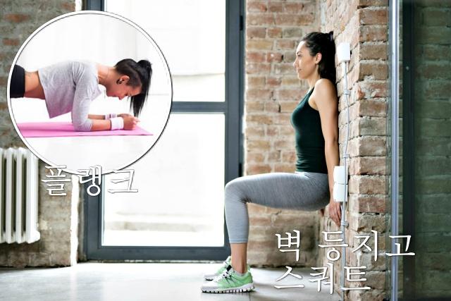 저항성 맨몸 운동 근육량 늘리는 방법, 근육 부자, 근감소증 좋은 음식 운동, 건강 팁줌 매일꿀정보