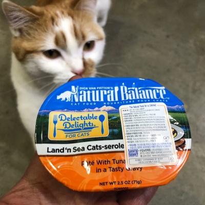 고양이습식사료