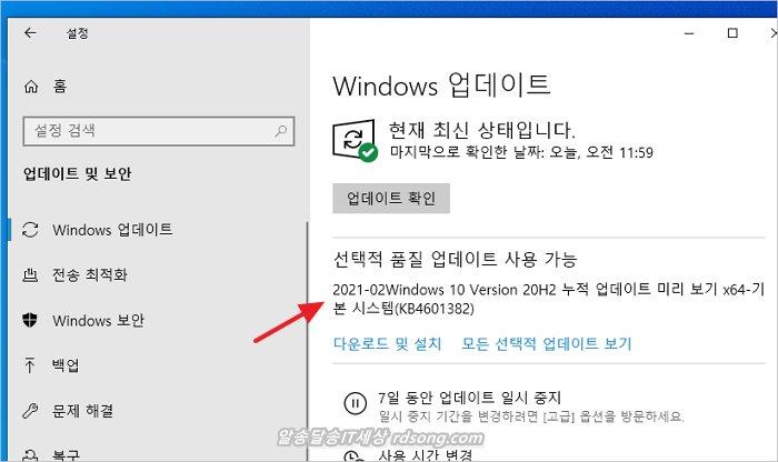 윈도우 10 20H2 선택적 업데이트 KB4601382 어도비플래시 제거