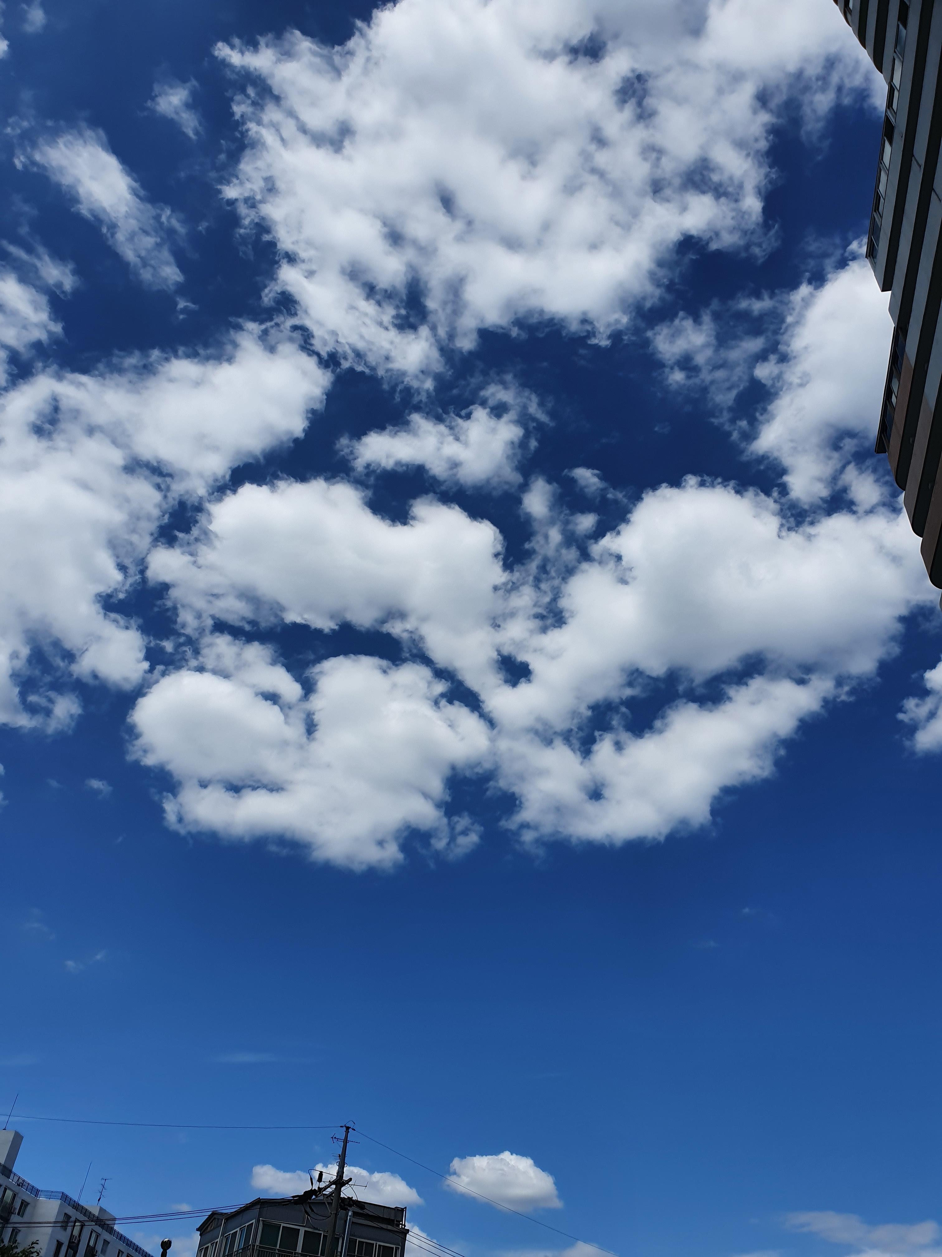 초가을 하늘만큼 파란.. 하늘