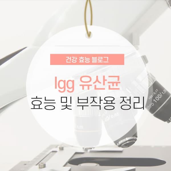 lgg 유산균 추천 이유 소개 컨텐츠