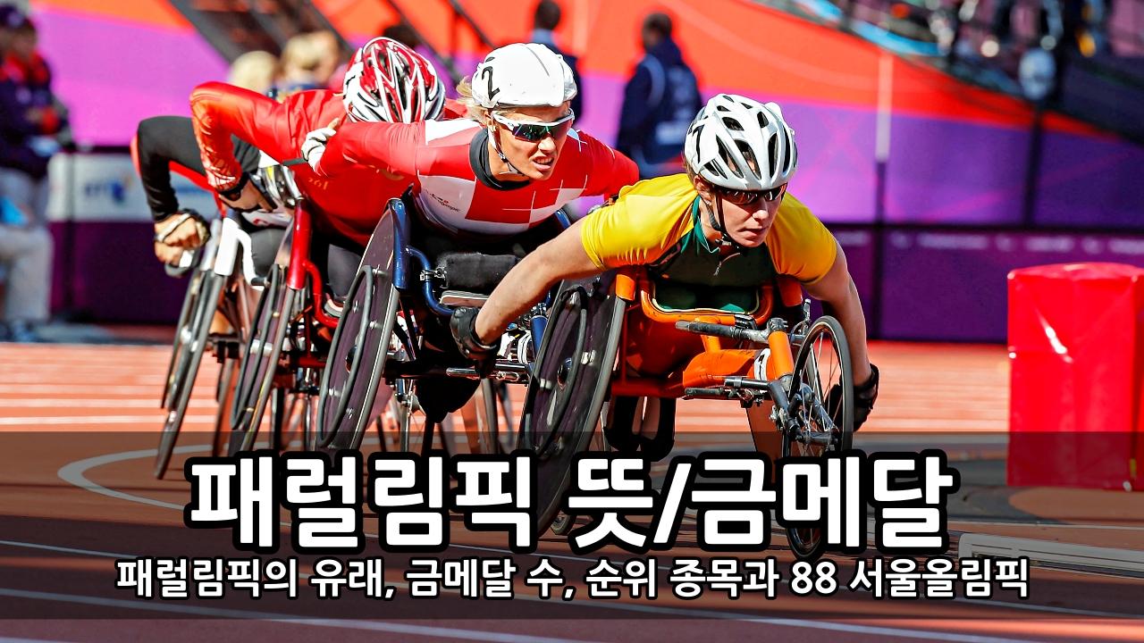 패럴림픽이란 뜻과 역사 - 패럴림픽의 유래, 금메달 수, 순위 종목과 88 서울올림픽