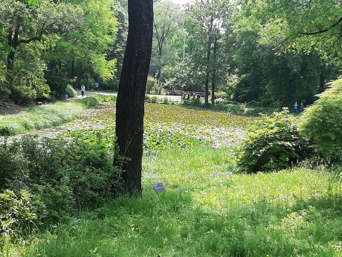 국립수목원