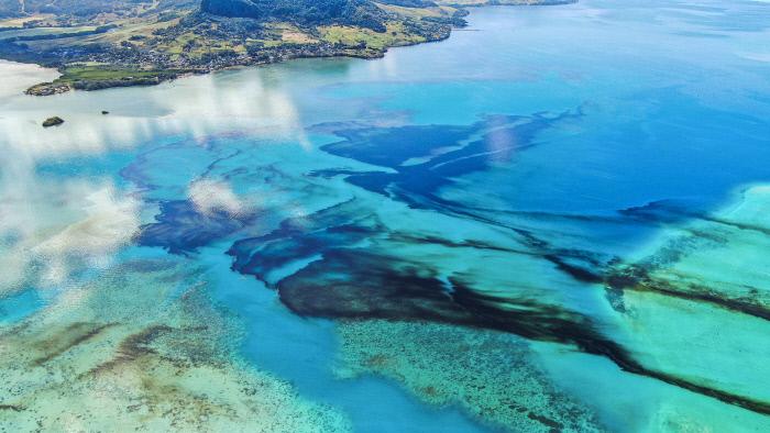 [사진으로 본 세계]일본 배 기름 유출로 '생태관광' 위기 맞은 모리셔스