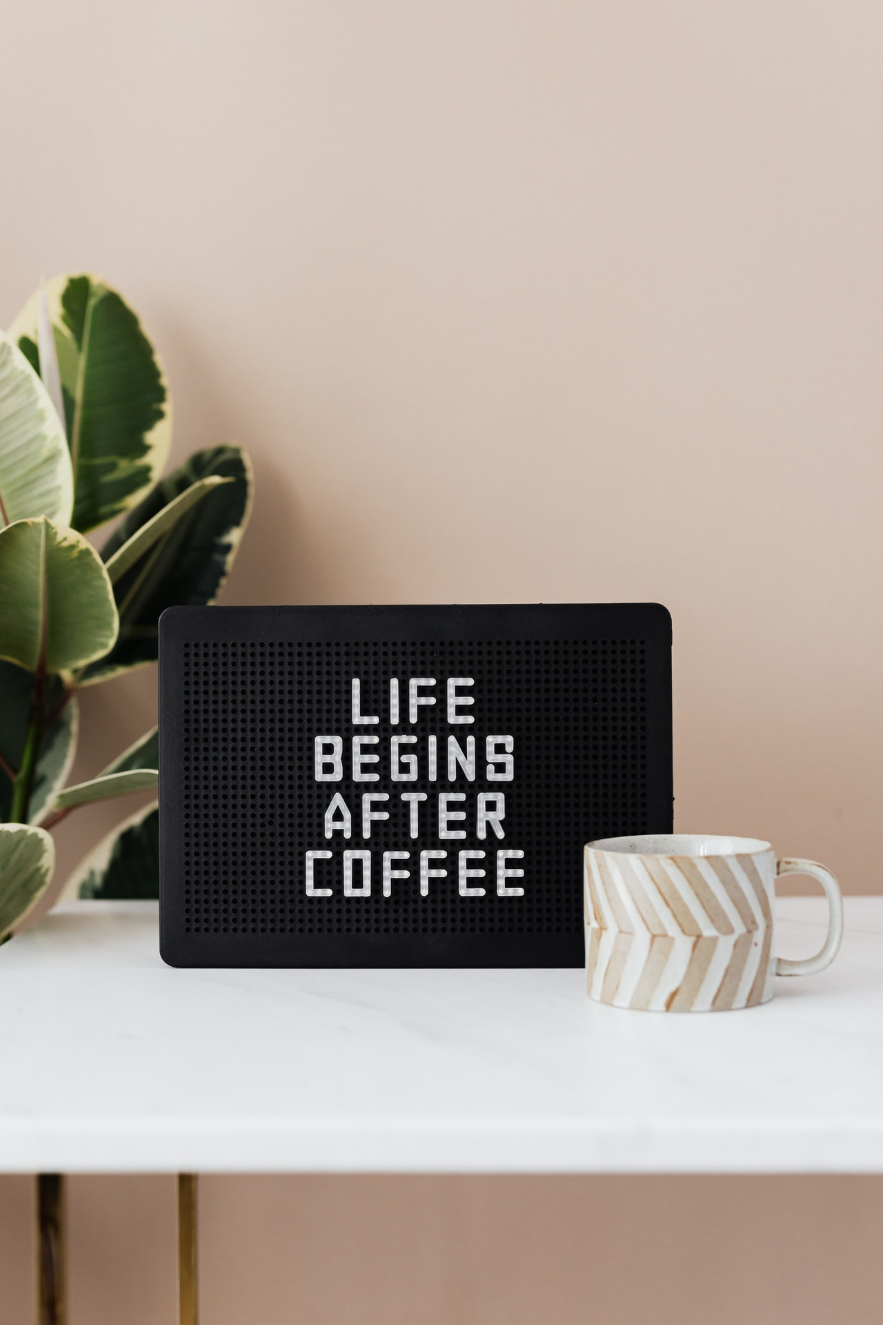 Life begins after coffee 인생은 커피로부터 시작