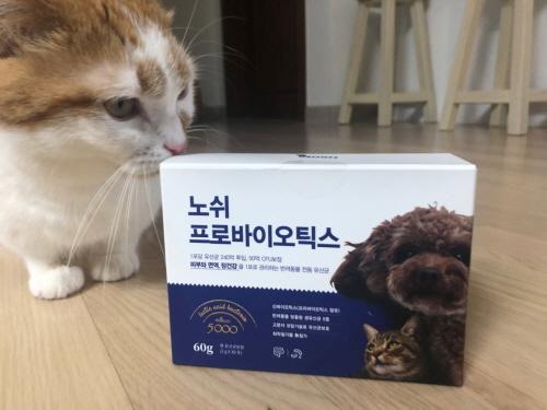 고양이장건강