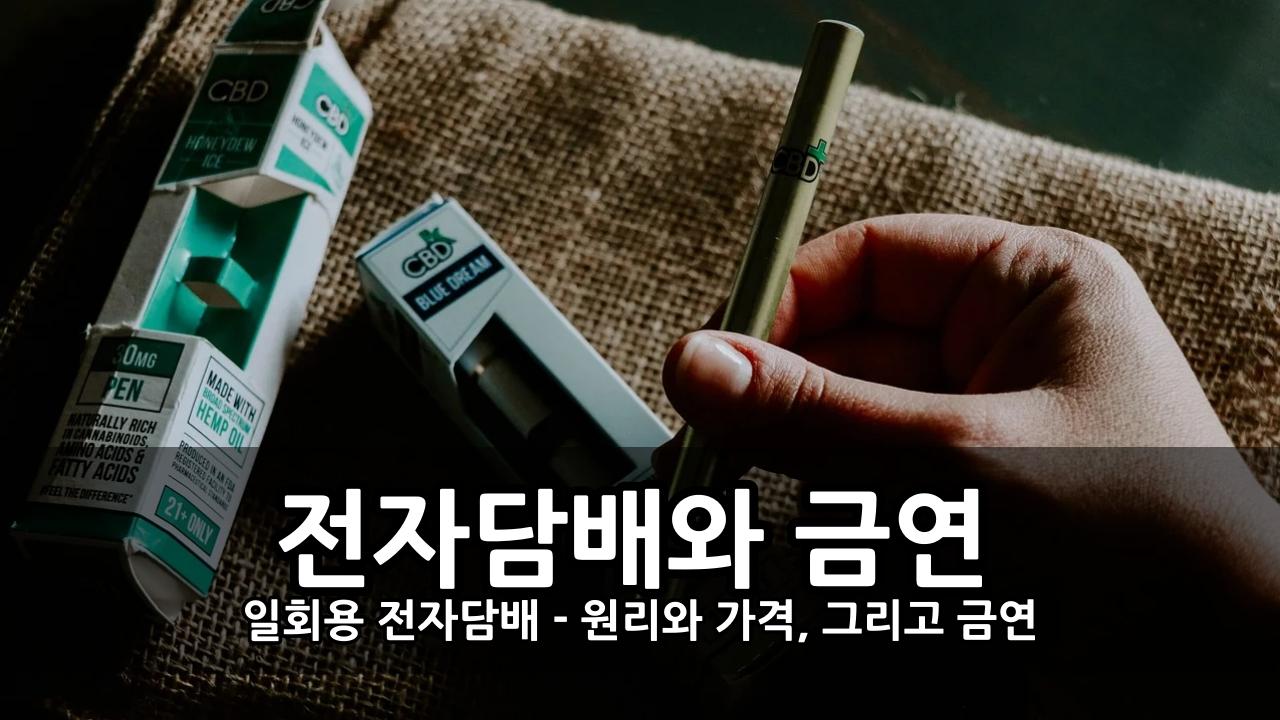 금연? 일회용 전자담배 - 원리와 가격, 그리고 금연