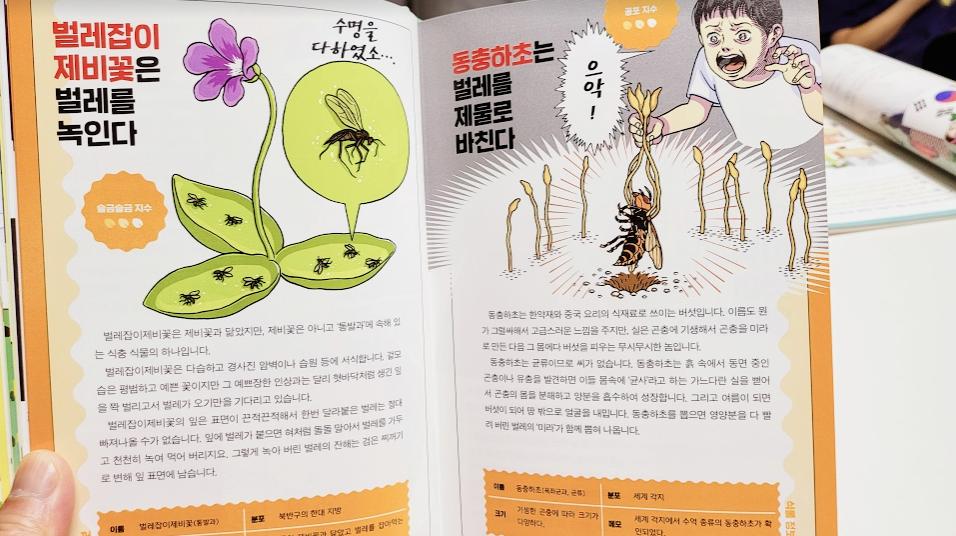 의외로 수상한 식물도감 동충하초