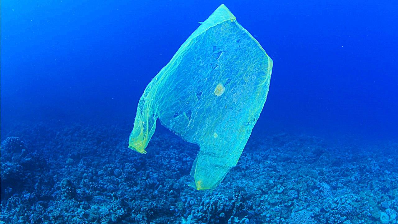 바다 속 비닐봉투