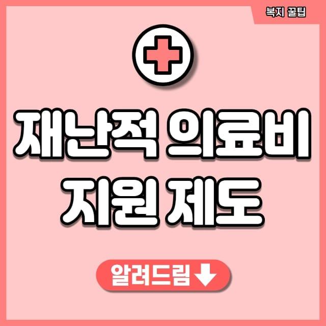 재난적 의료비 지원