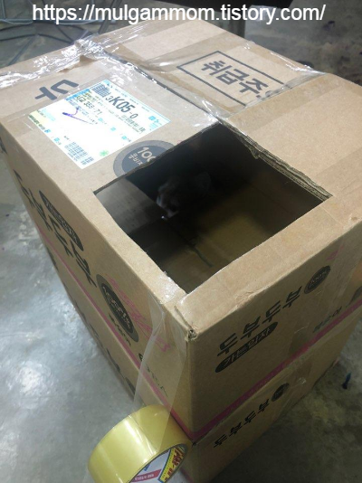 고양이캣타워만들기