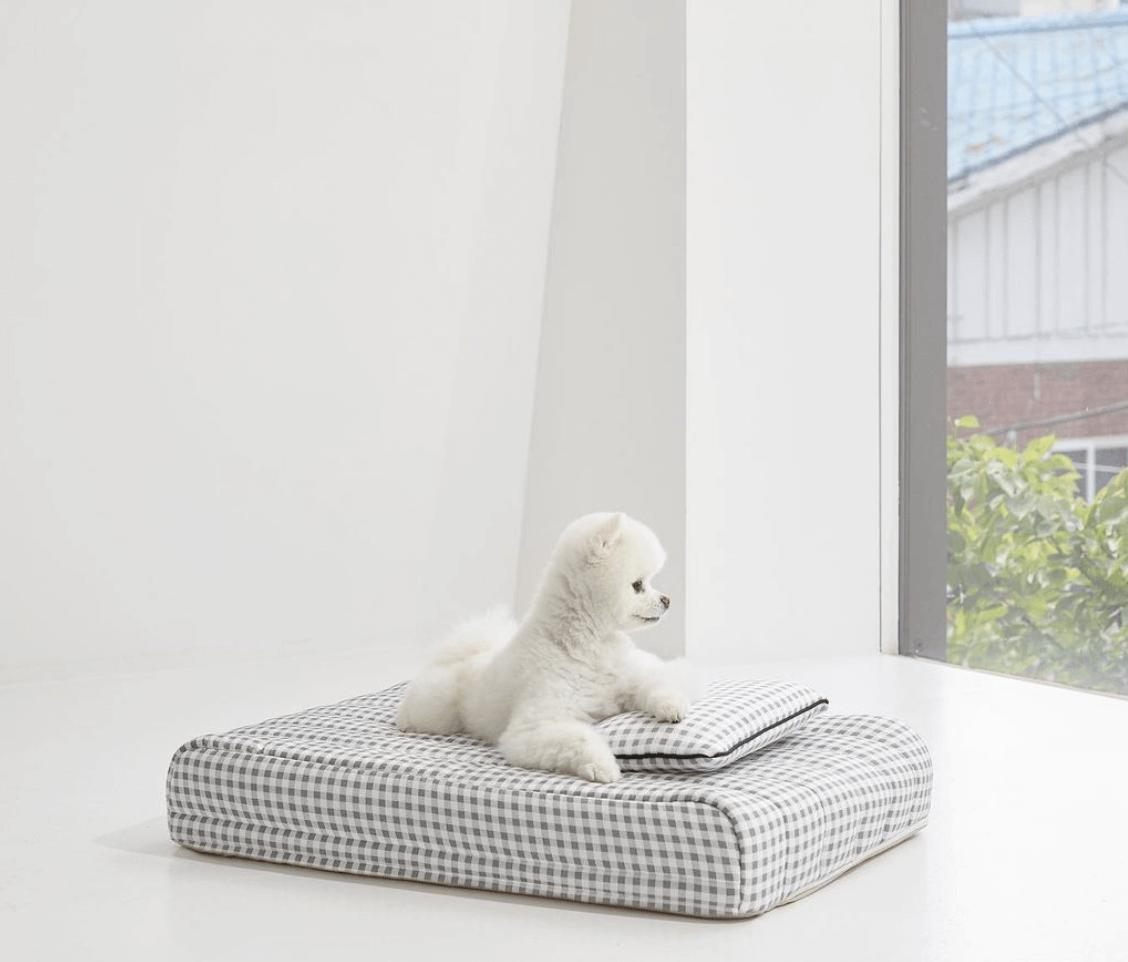 강아지-매트-무아유