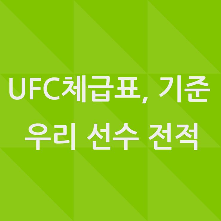 UFC 체급표