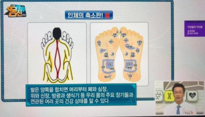 몸신귀족관리
