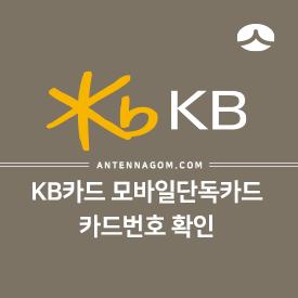 KB국민카드 모바일 단독카드 카드번호 확인