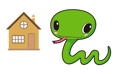 집에 뱀이 나타났을 때