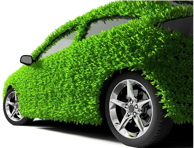 자동차-나뭇잎