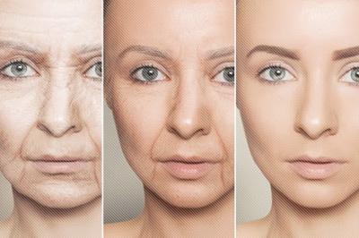 노화방지에 효과 있는 질경이