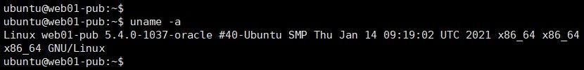 ubuntu 버전확인