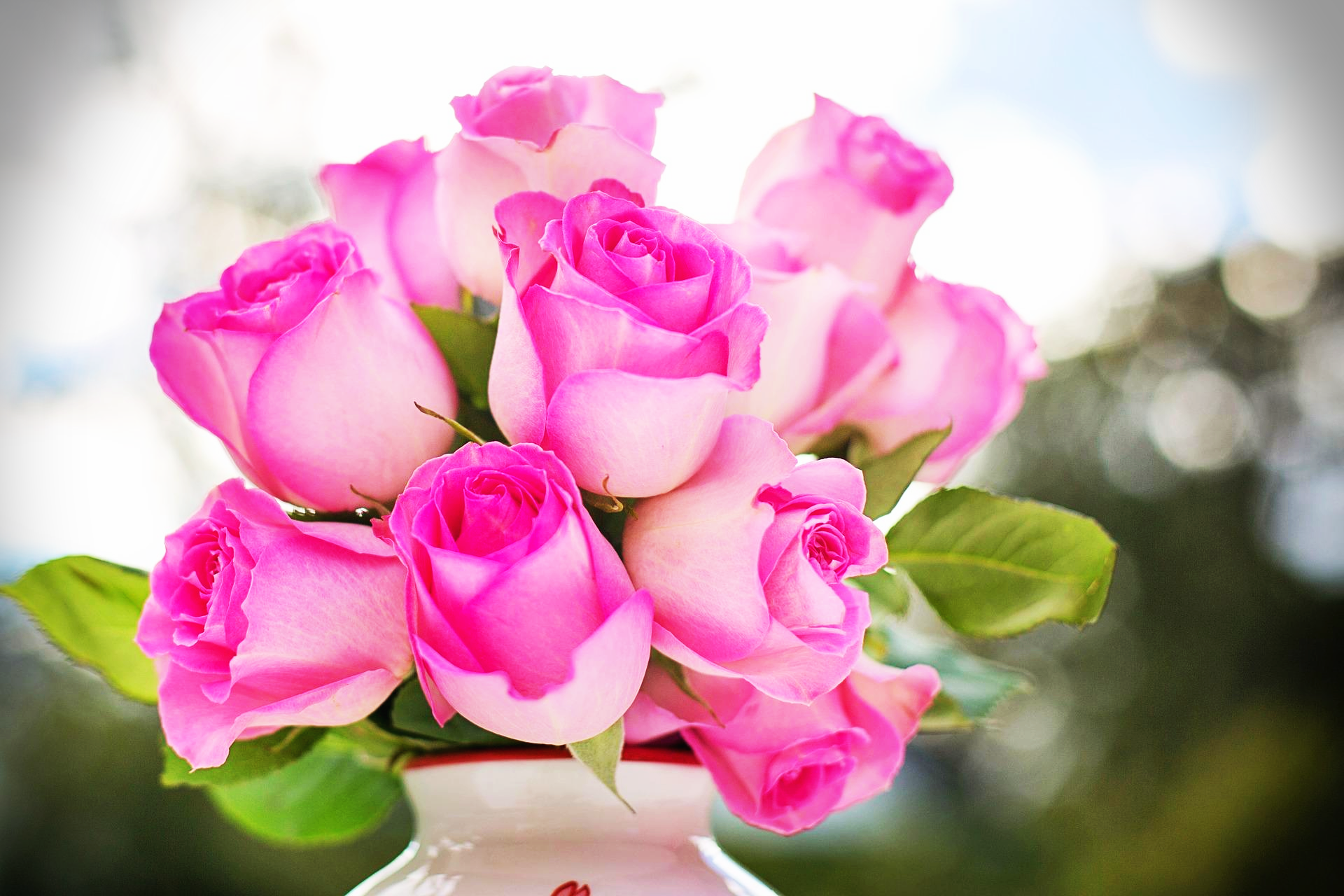 분홍장미꽃말