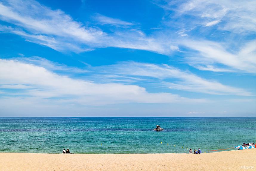 여름 안목 해변