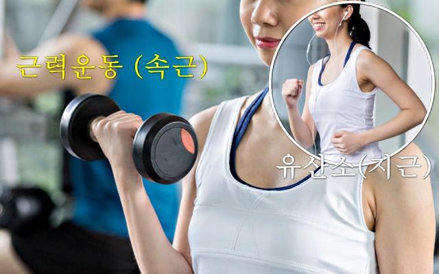 근력운동 유산소운동, 근육량 늘리는 방법, 근육 부자, 근감소증 좋은 음식 운동, 건강 팁줌 매일꿀정보