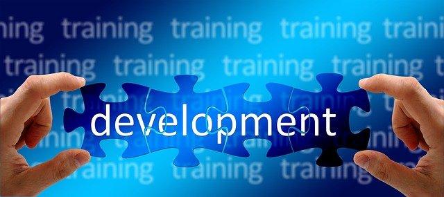 중국의 인적 자원 개발