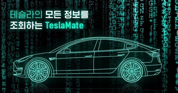 테슬라 오너가 알려주는, 테슬라메이트(TeslaMate) 라즈베리파이에 설치 방법 (테슬라 통계 관리 프로그램)