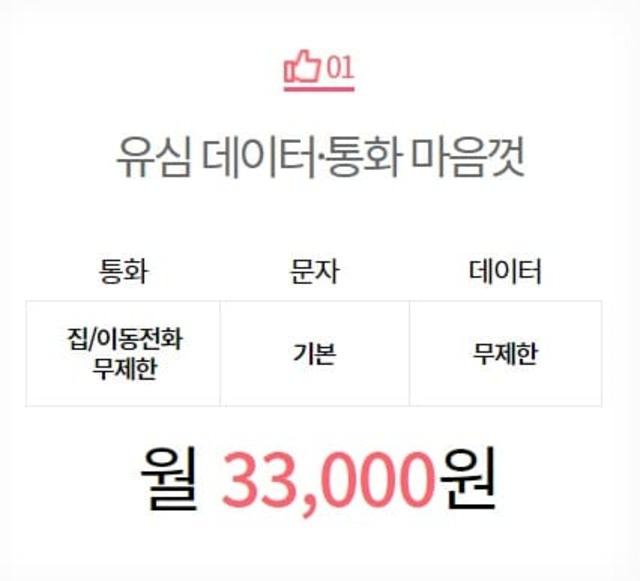 월 33,000원 요금제
