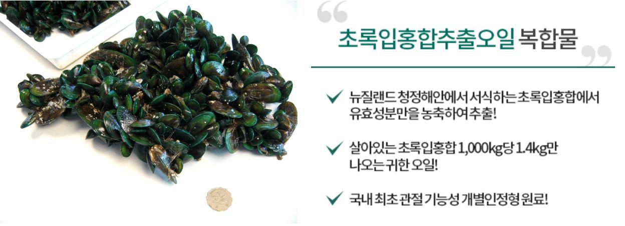 초록입-홍합-사진과-관절팔팔-효과-설명