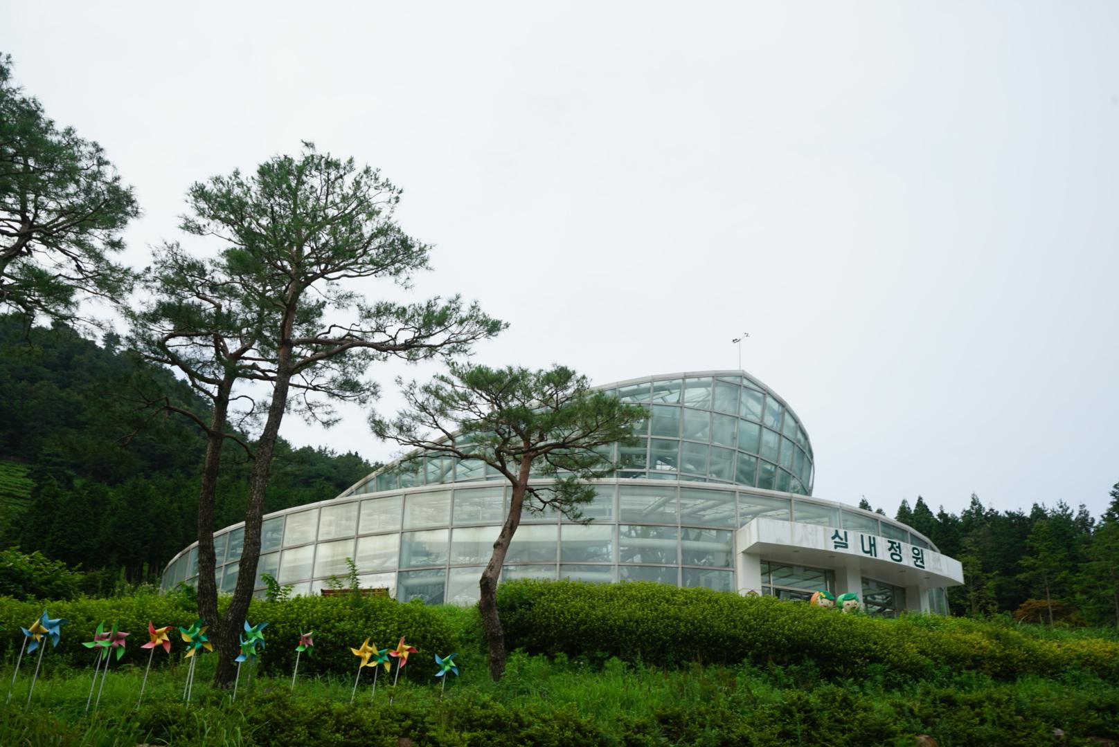 보성 녹차 박물관 실내정원