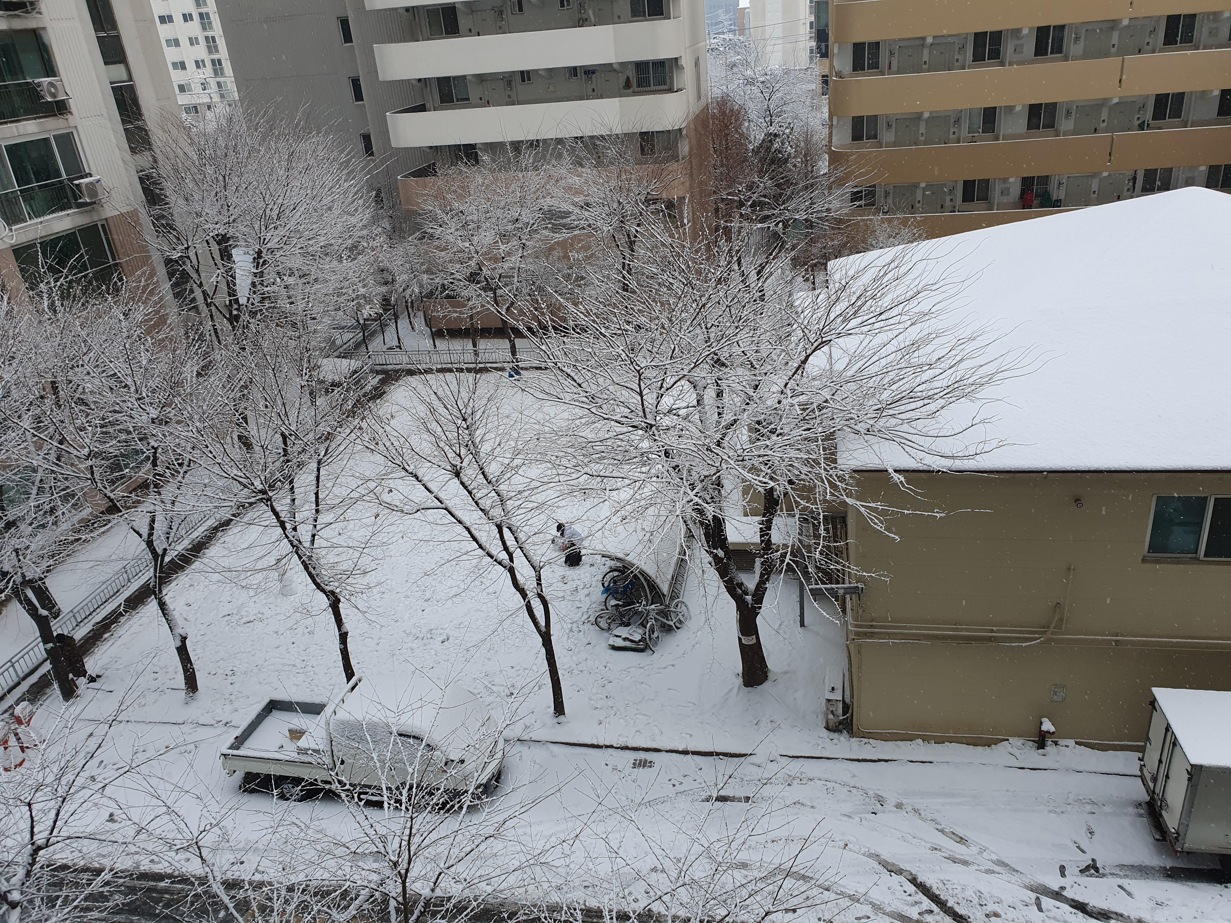 두번째로 눈이 많이 왔을 때 찍은 사진(2021.1.12)