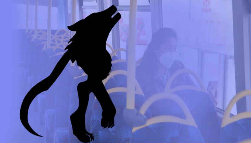 달리는 시내버스서 바지 벗고 옆자리 여성에 달려든 10대