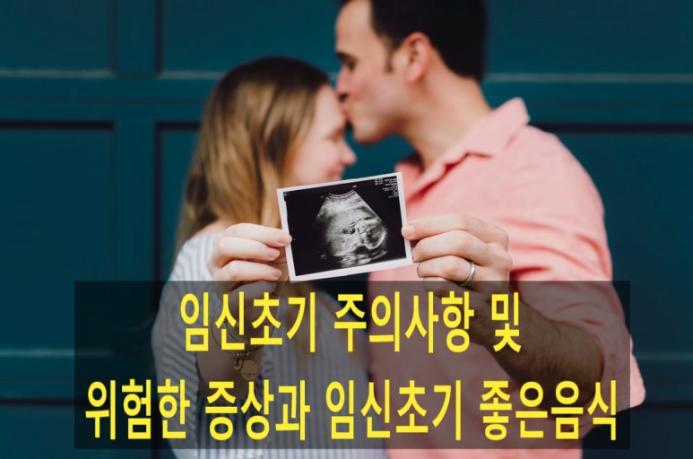 임신초기주의사항
