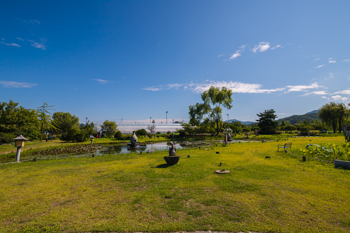 열대 수련 정원