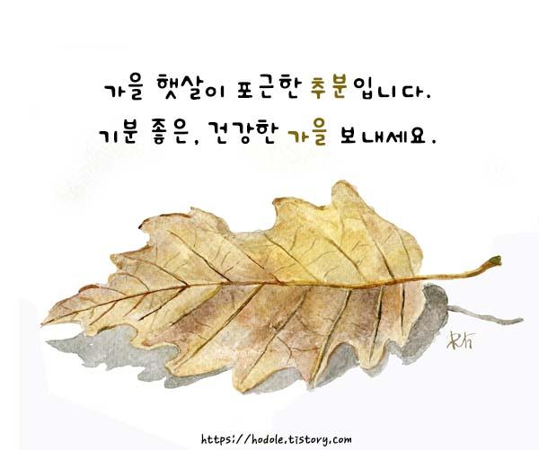 낙엽-수채화