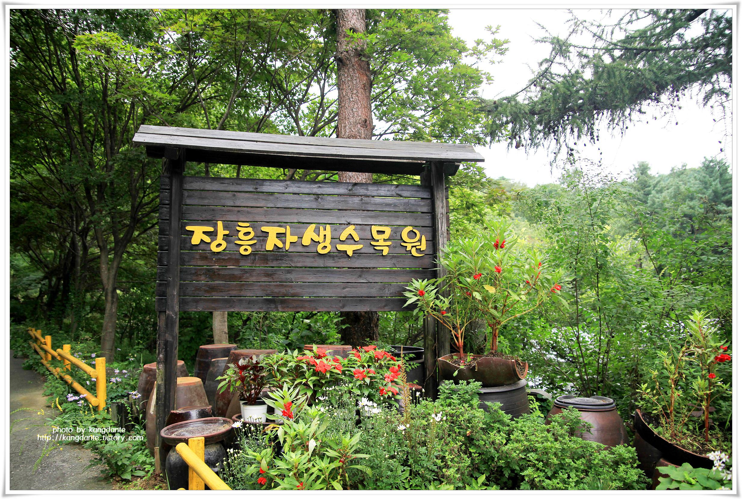 자연림으로 조성되어 산림욕하기 좋은 장흥자생수목원