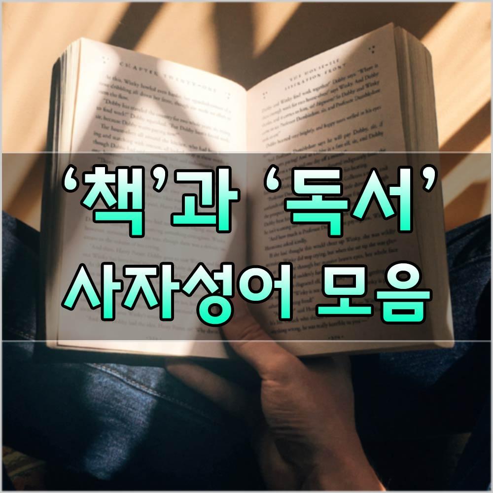 독서사자성어