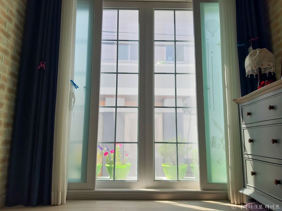 창 밖에 봄 햇살 디카시