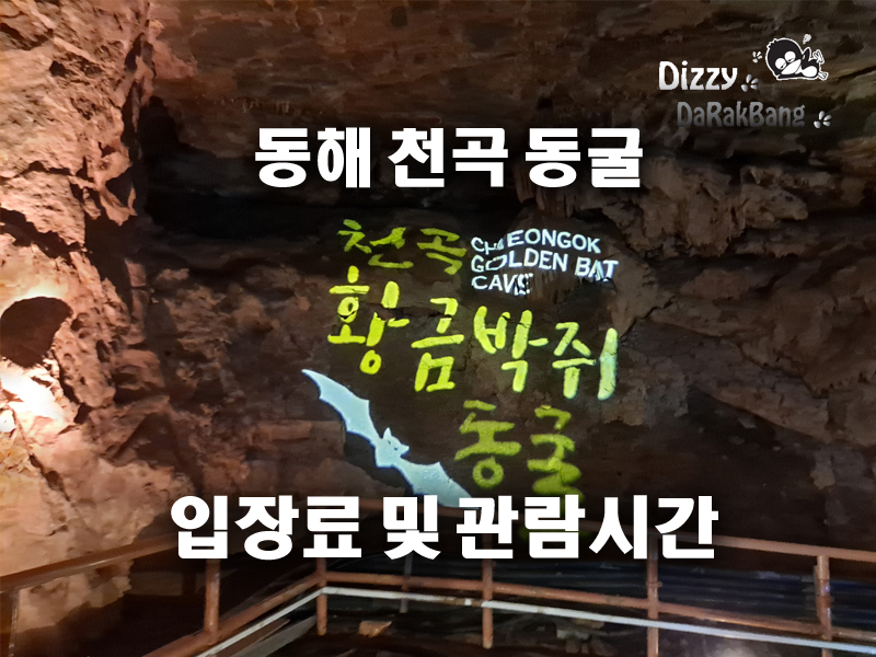 황금박쥐동굴 ! 동해 천곡 동굴 입장료 및 관람시간