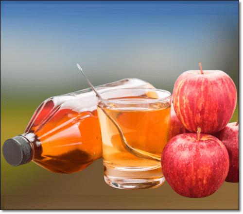 사과초모식초물