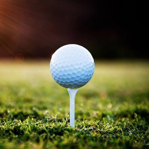 골프 홀인원보험 비교사이트