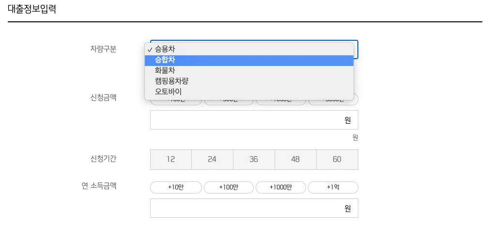 신한마이카_대출정보입력란