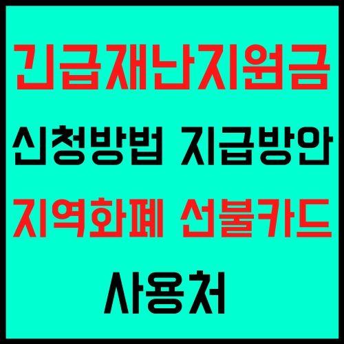 긴급재난지원금 신청방법 정부 재난지원금 지급방안 전국민 지급 지역화폐 선불카드 사용처