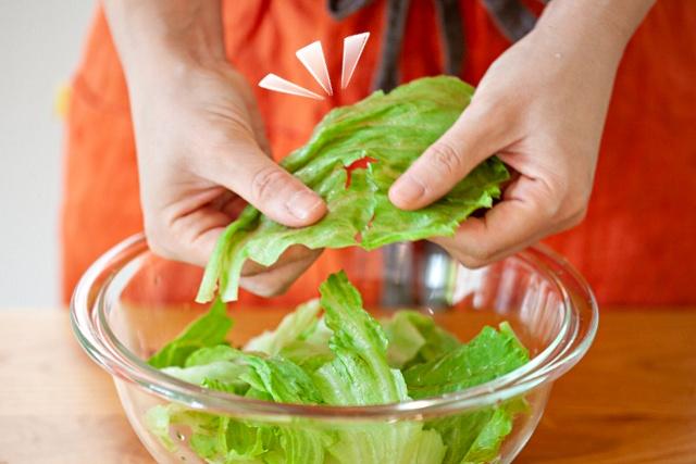 시든 상추 살리는방법, 시든 채소 싱싱하게, 얼음물 양상추, 팁줌 매일꿀정보